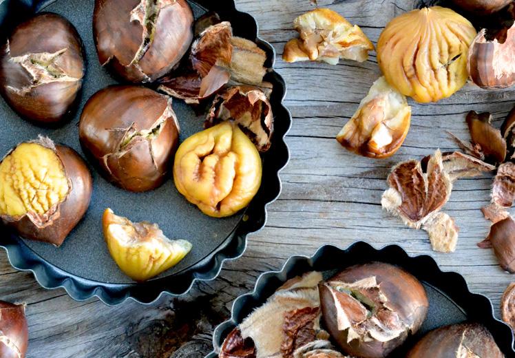 Резултат с изображение за chestnuts