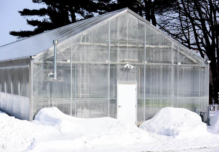 Greenhouse-Outside