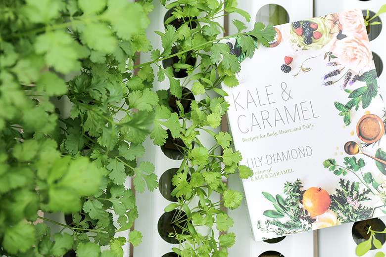 Kale and Caramel Cookbook | www.floatingkitchen.net