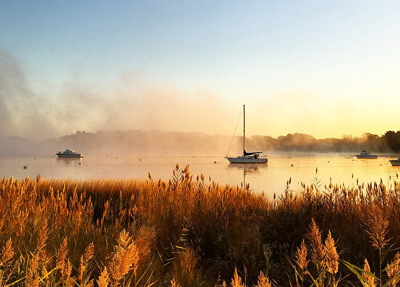 Sailboat Sunrise Marsh