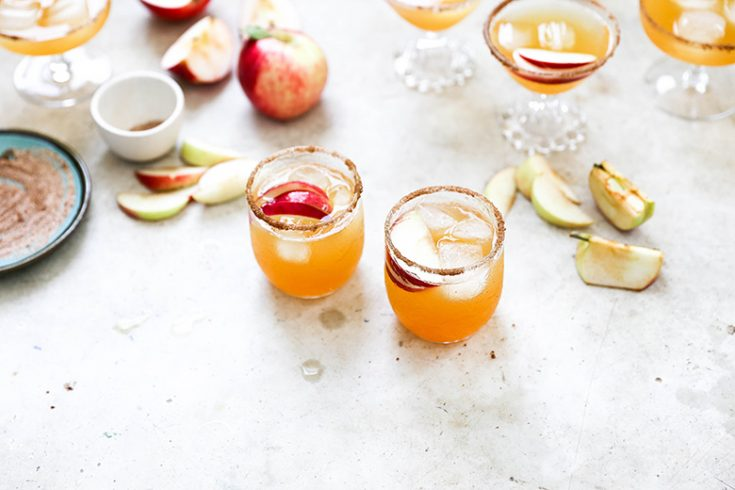Apple Cider and Ginger Beer Bourbon Cocktails