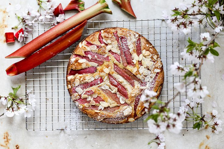 Rhubarb Almond Cake Floating Kitchen