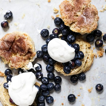 Snickerdoodle Blueberry Shortcakes | www.floatingkitchen.net