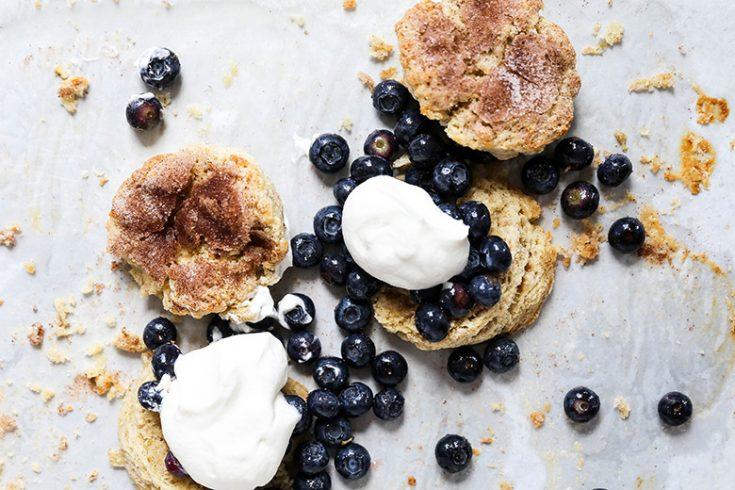 Snickerdoodle Blueberry Shortcakes